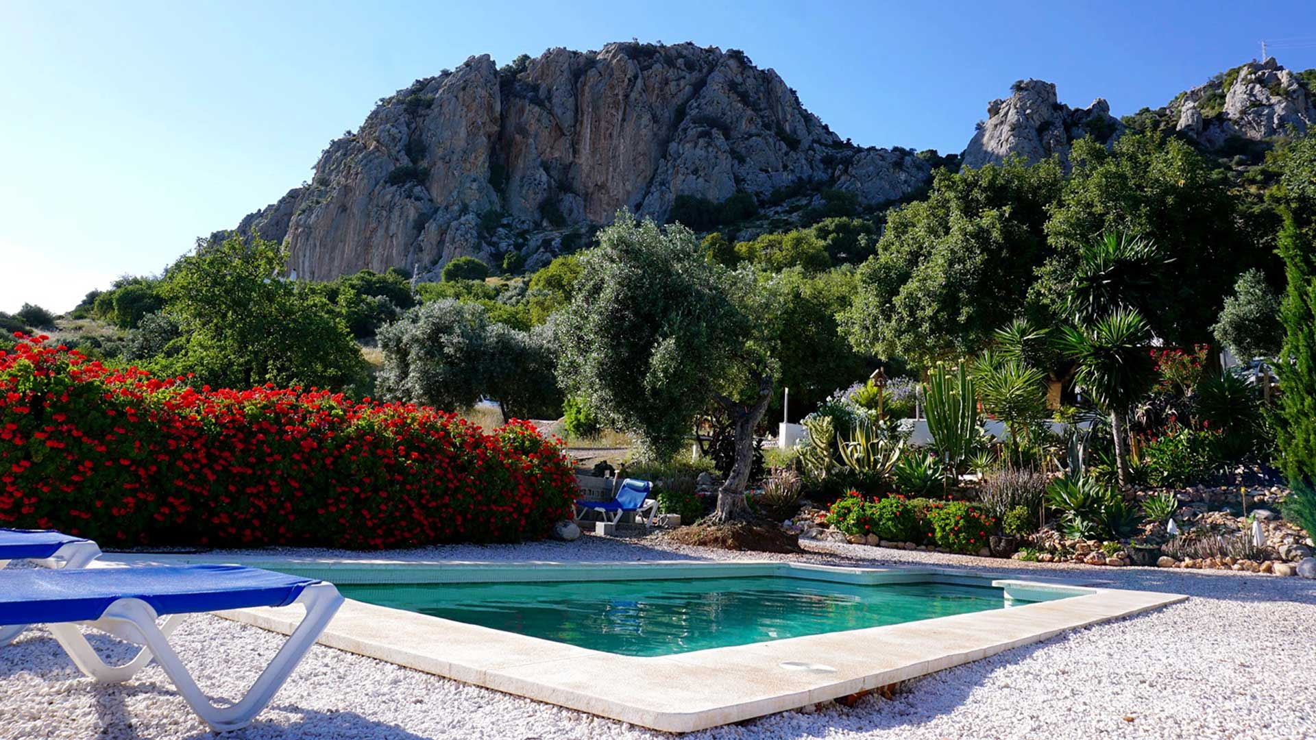Olive Branch El Chorro - Camping, Bunkhouse and En suite accommodation in el chorro spain Olive Branch El Chorro malaga spain